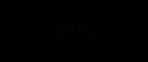 Logo Officiel PolySI Noir